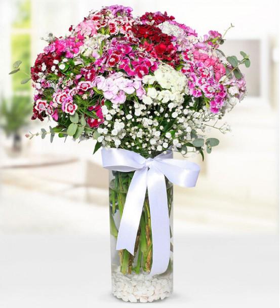 Mevsim Çiçekleri 3